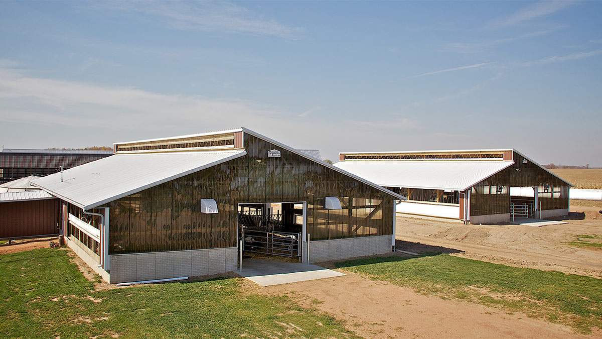 Automated Calf Feeding Facility
